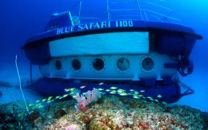 Blue Safari Mauritius Excursions – A Submarine Journey!